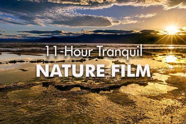 11-Hour-Tranquil-Nature-Film_739x420px