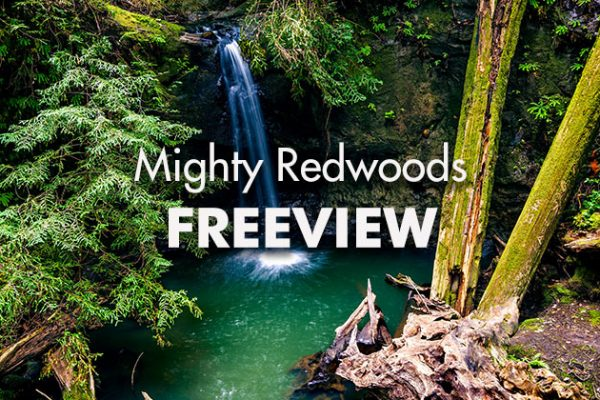 Mighty-Redwoods-Freeview_739x420px