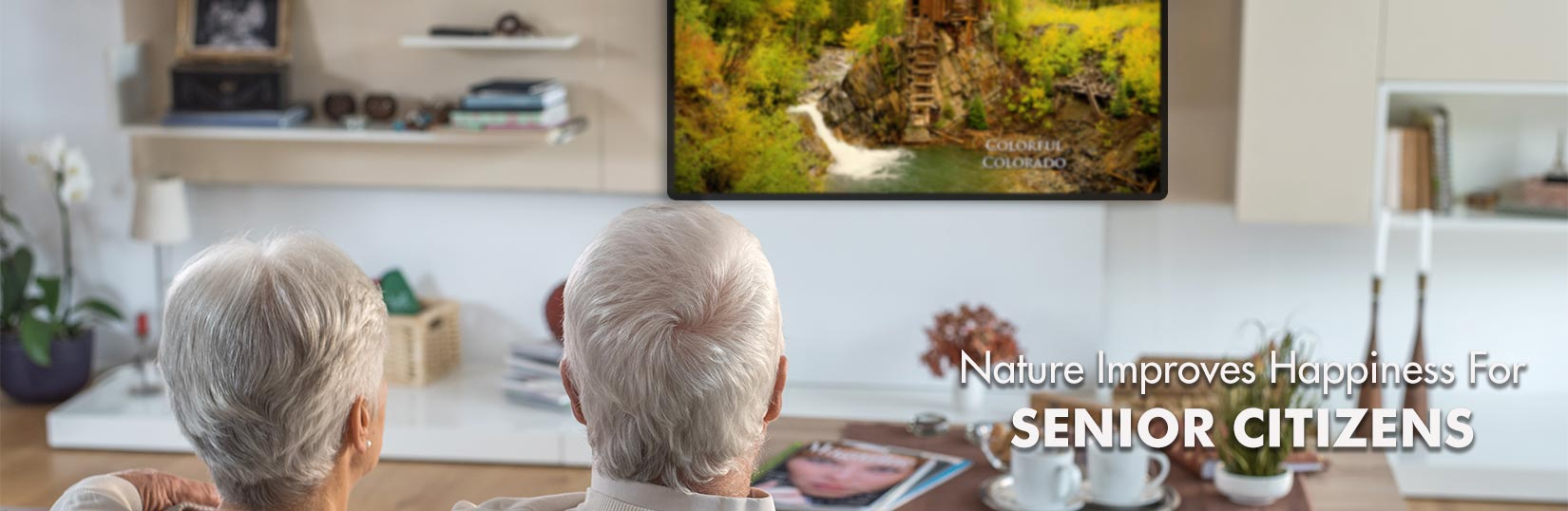 Senior Citizens Watching Nature Video On Television