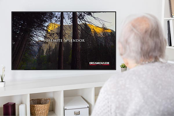 Senior Citizen Watching Nature Video On Television