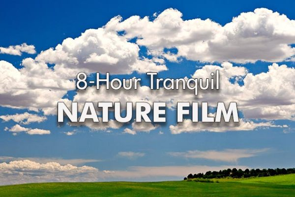 8-Hour-Tranquil-Nature-Film_739x420px