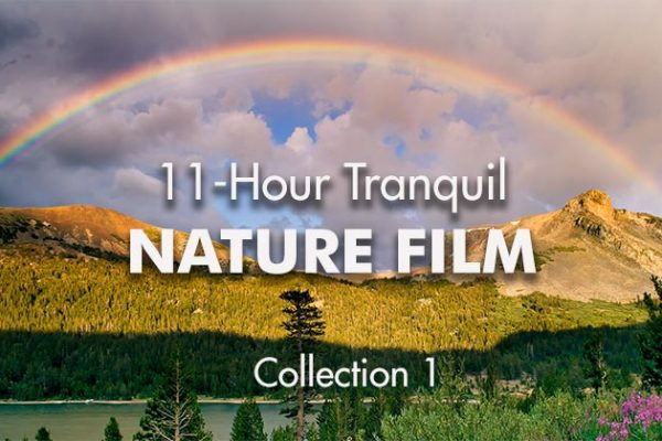 11-Hour-Tranquil-Nature-Film1_739x420px