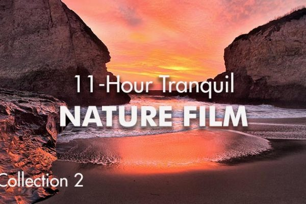 11-Hour-Tranquil-Nature-Film2_739x420px