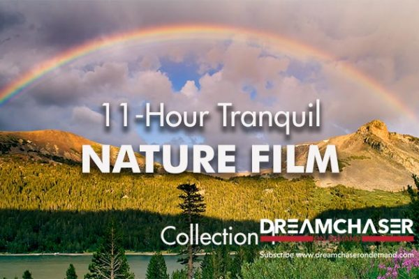11-Hour-Tranquil-Nature-Film-Logo2_739x420px
