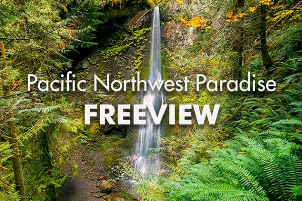 Pacific-NW-Paradiser_Freeview_739x420px