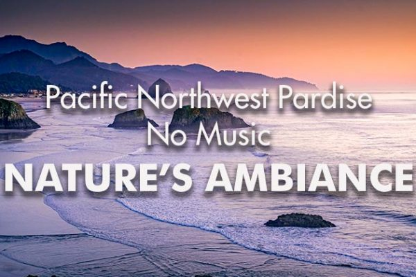 Pacific-NW-Paradise-Film-NM_739x420px