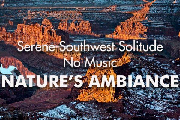 Serene-SW-Solitude_Film_NM_739x420px